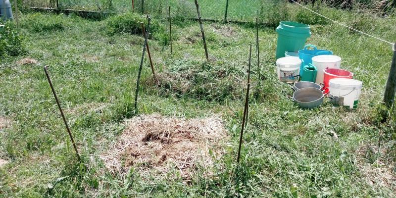 angolo raccolta acqua e compost