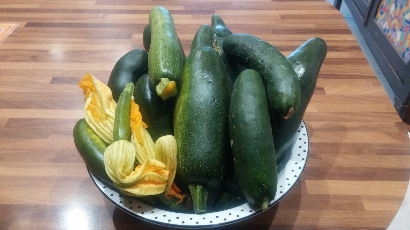 zucchine e fiore di zucchina biologici