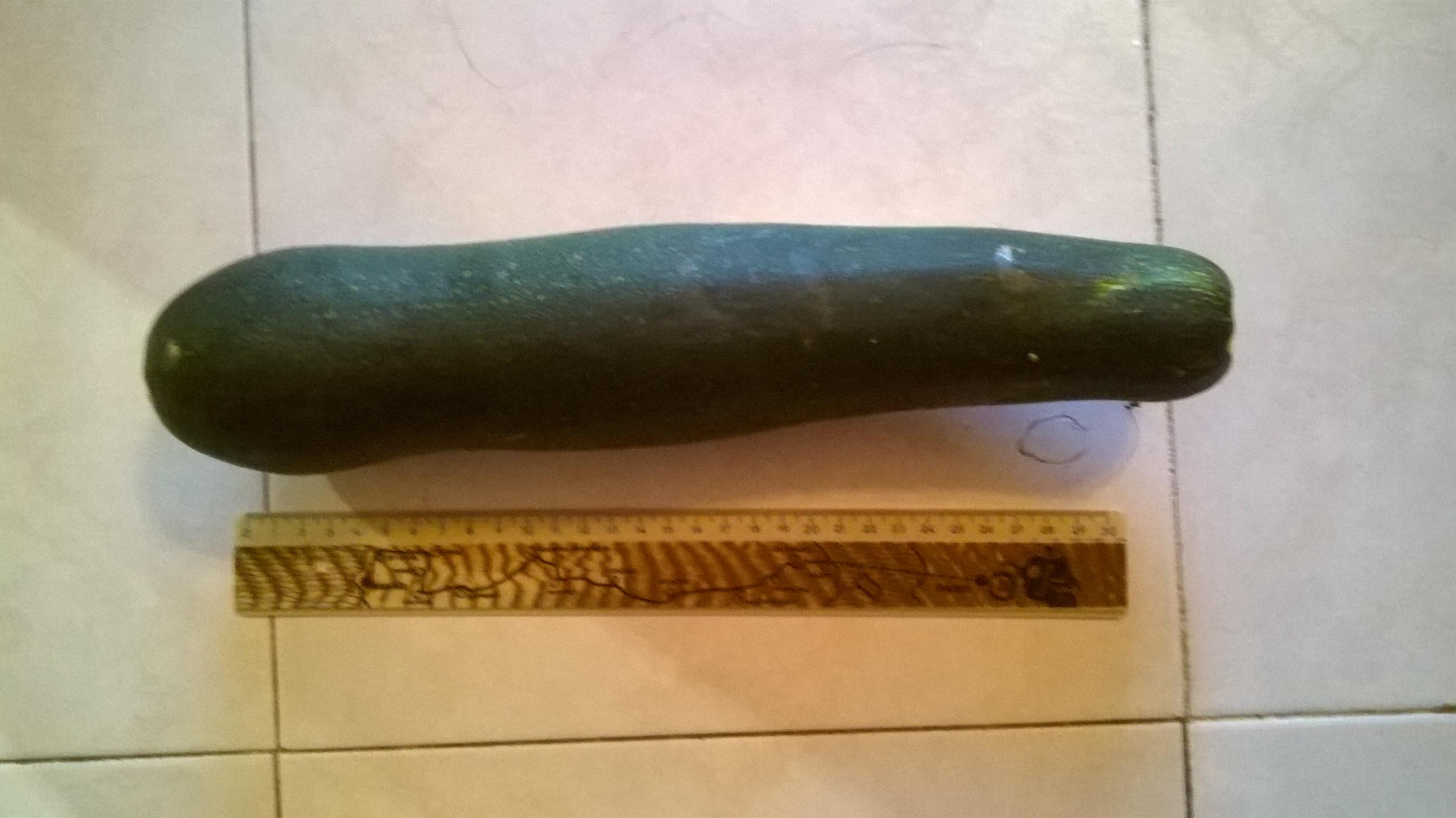 zucchina grande