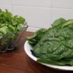 Usare il compost per coltivare sul balcone di casa: si può!